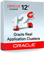 Oracle Real Application Clusters (RAC)/Real Application Clusters One Node
