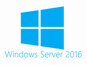 Microsoft Windows Remote Desktop Services CAL 2016