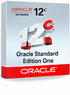 Oracle Database Standard Edition One ������������� ��� ������������� � ����� � ������� ���������. ��� ������ � ��������� � ���������������� � ��������� ����������� ���������� ��������������.